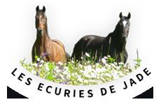 Les écuries de jade